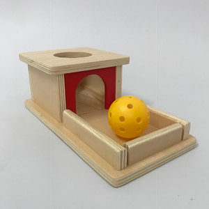 Object Permanence Box & Tray