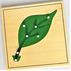 BotanyPuzzle-Leaf