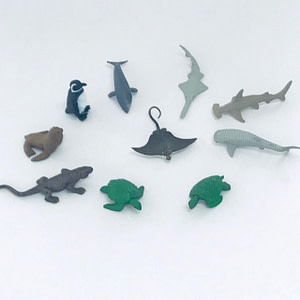 Endangered Species - Marine