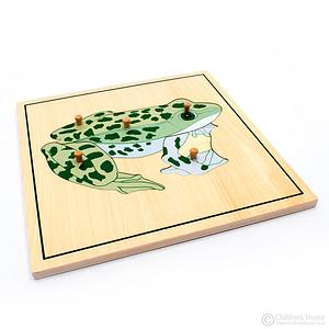 Frog Skeleton Puzzle